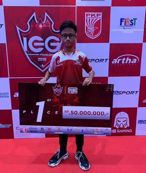 Pro Player PUB Mobile Terbaik Indonesia